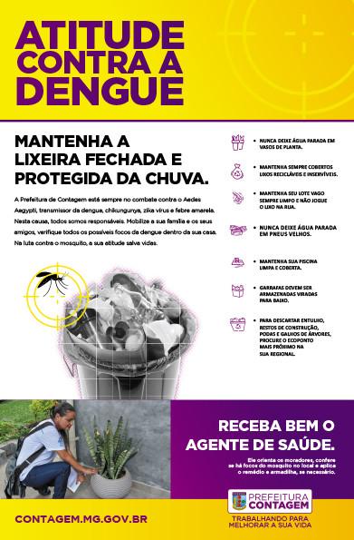 Dengue Lixeira.jpg