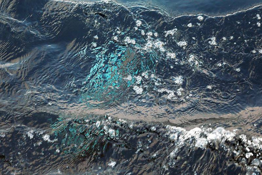 青木信之写真展 「煌めく宝ー壱岐と奄美の海から」