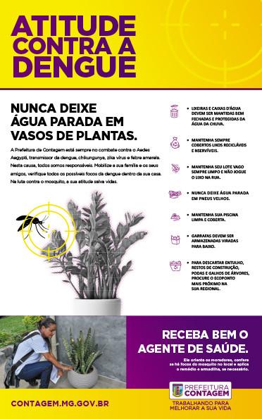 Dengue Vaso.jpg