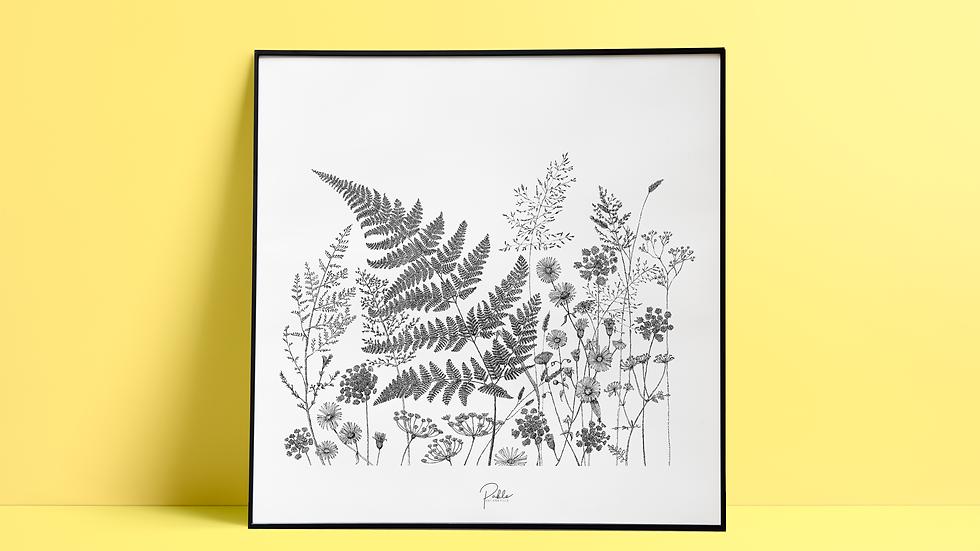 Sérigraphie Fleurs des Champs/ Noir