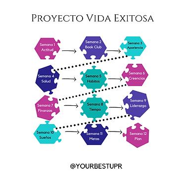 Proyecto-Vida-Exitosa-2.png