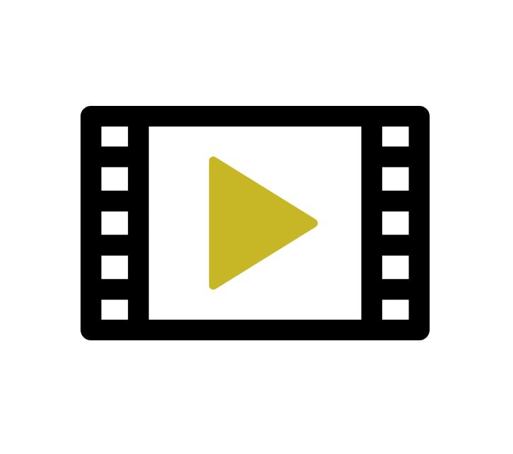 Digital Distribution Plan & Execution