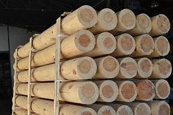 poste-de-madera-tratada-en-autoclave-1.j
