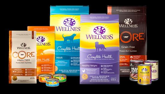 wellness-14.png