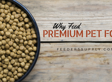 Why Feed Premium Pet Food?
