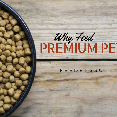 Why Feed Premium Pet Food?