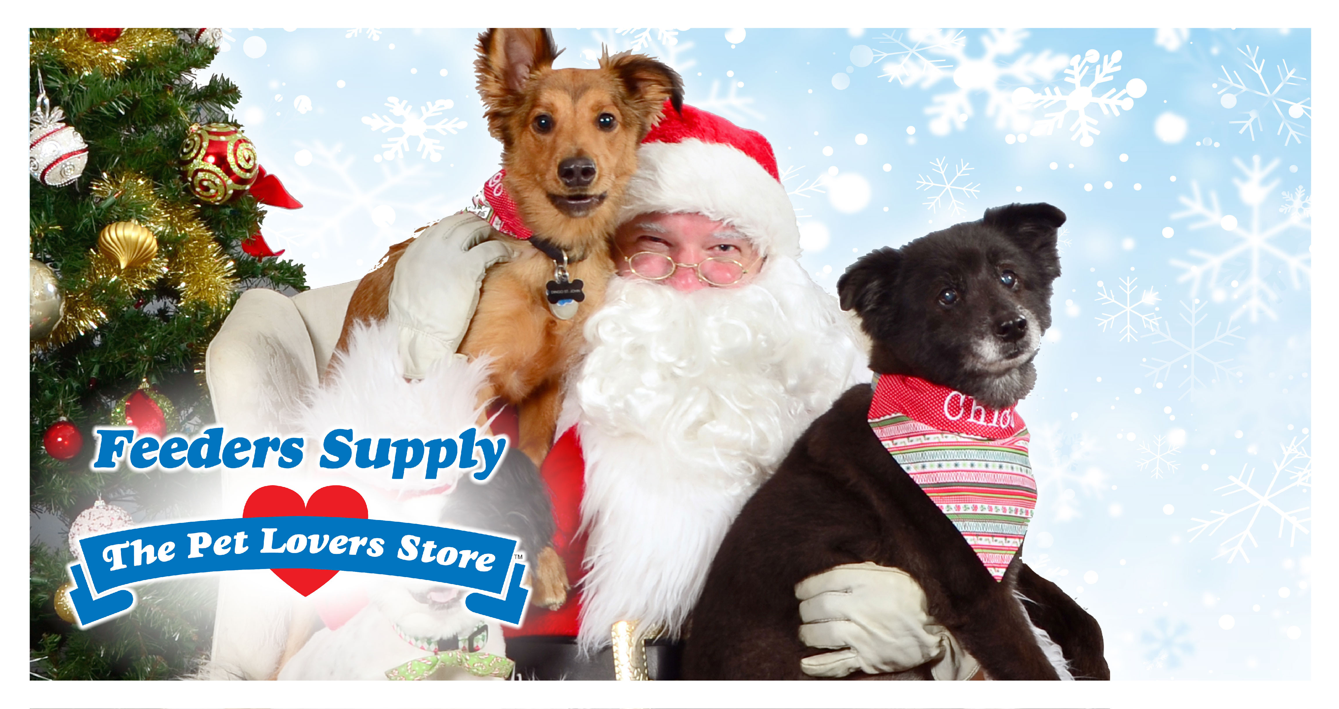 Feeders Supply Picture Your Pets With Santa