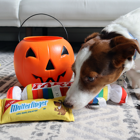 Trick-or-treating anxiety?
