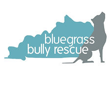 BBR logo.jpeg