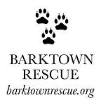 barktown.png