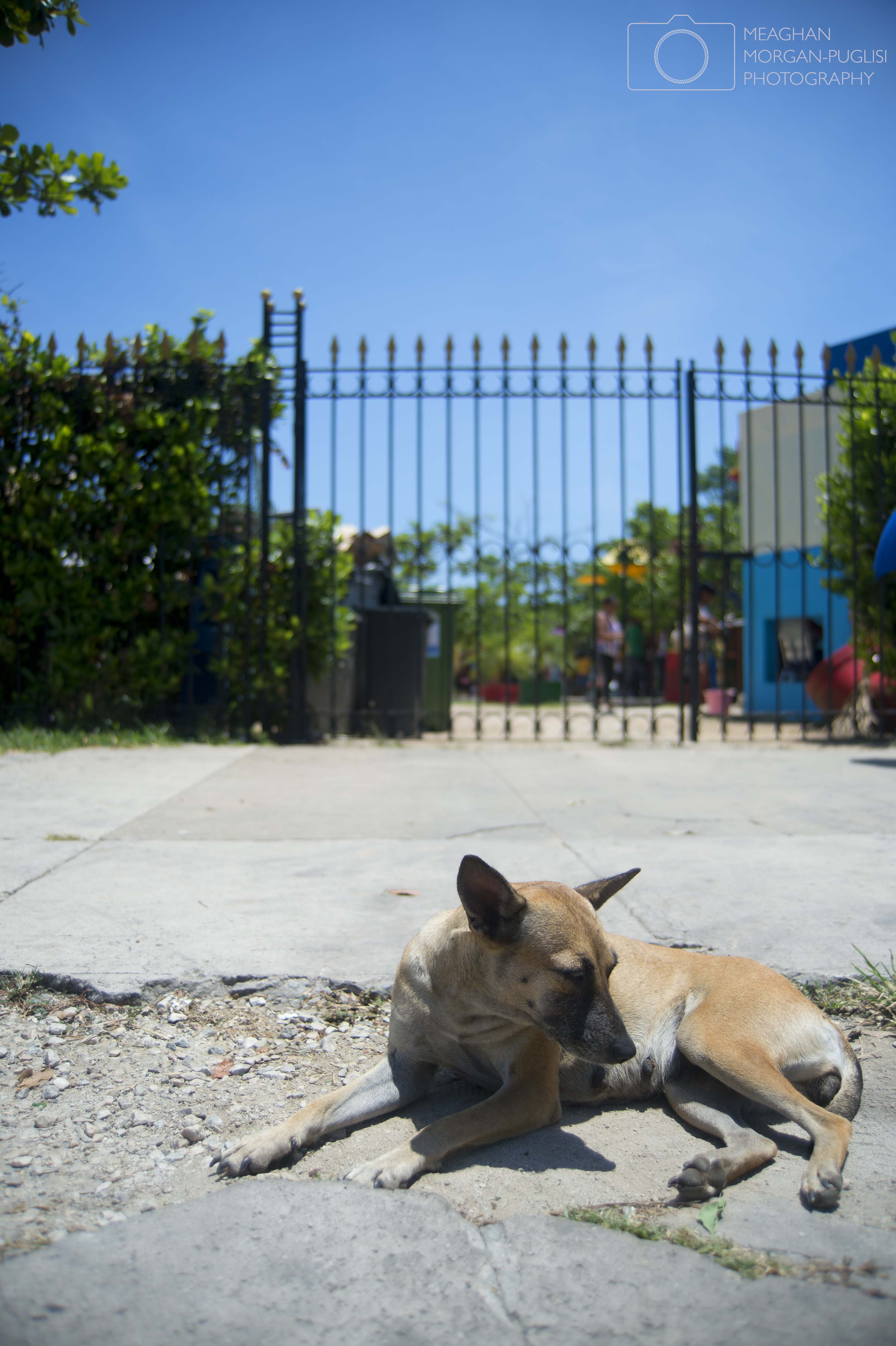 La Habana Vieja, 2015