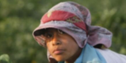 la-fg-product-of-mexico-child-labor-pg-2