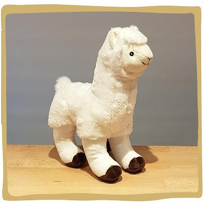 Lama - Wit