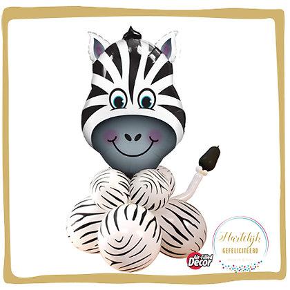 Zotte Zebra