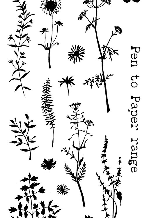 Flower Wild DL Stamp set