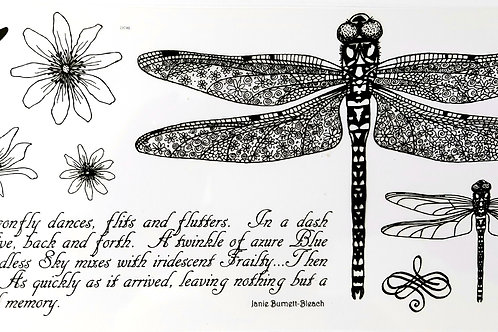 Dragonflies DL stamp set, designed by Janie for Hobby art