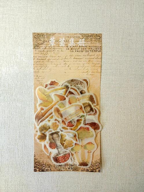 Mushroom stickers. 60 pack.