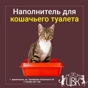 Наполнитель для кошачьего туалета — какой лучше