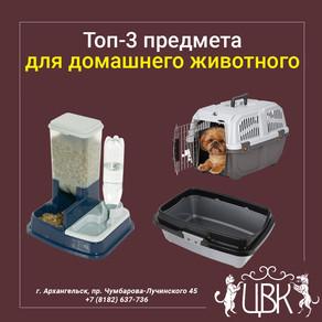 Топ-3 предмета первой необходимости для домашнего животного
