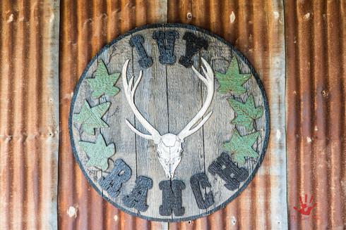 Ivy Ranch Trip 2016