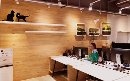 舞夏設計-辦公室設計-小清新-台中室內設計-商空設計-是內設計 (7).jpg