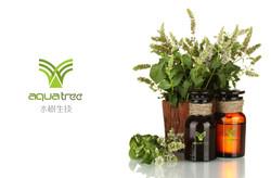 水樹生技品牌設計