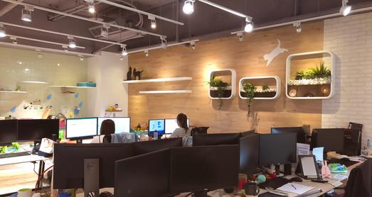 舞夏設計-辦公室設計-小清新-台中室內設計-商空設計-是內設計 (9).JPG