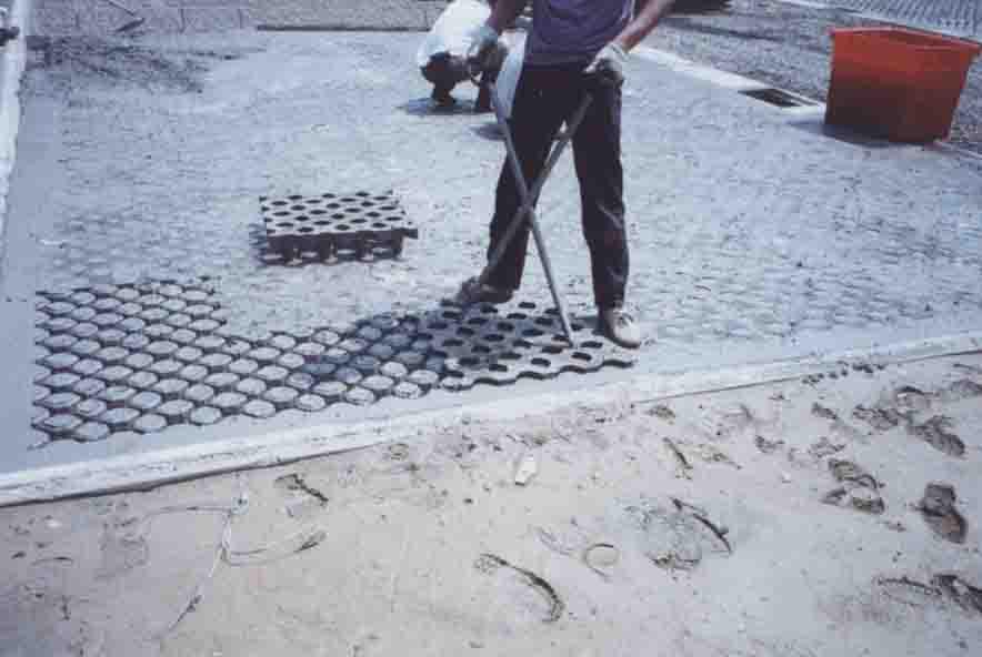 拔除植草磚模具