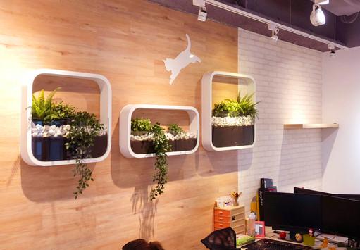 舞夏設計-辦公室設計-小清新-台中室內設計-商空設計-是內設計 (8).JPG