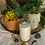 Thumbnail: Candle Blessings/Blessed Candles- (Ritual Magick, Moon Magick, Hoodoo)