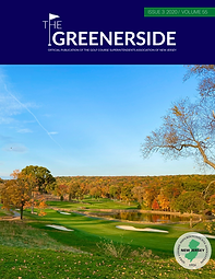 Greenerside 3_ 2020_Cover.png