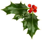 christmas-holly-clip-art-0.png
