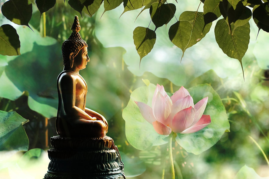 Visakha Puja Day , Buddha statue , lotus flower with double exposure