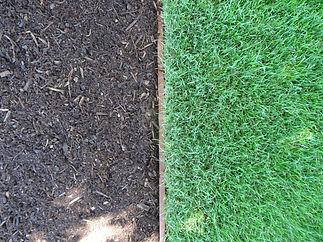 medium-dark-hemlock-bark-dust-mulch.JPG