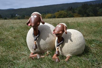 Couple de moutons