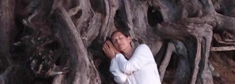 Caroline and Tree Roots