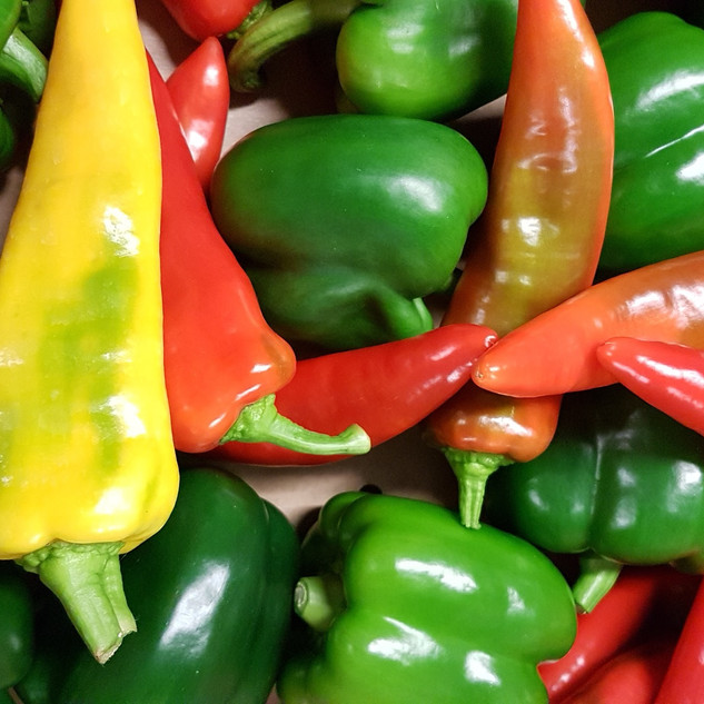 Chilis and Bell peppers