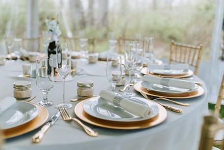 Dickerson/Schnieders Wedding Decor