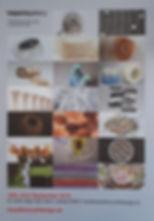 Transition craf and design exhibiton Espacio Gallery