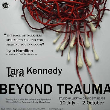 Beyond Trauma exhibition at South Hill Park
