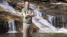 Criador do jogo Fortnite está comprando florestas inteiras para impedir que elas sejam derrubadas