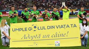 Jogadores de futebol na Romênia seguram cães abandonados antes dos jogos para incentivar a adoção