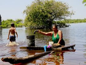 Moradores da Amazônia vão gerar renda coletando DNA de espécies florestais