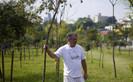 Sozinho, o aposentado Hélio da Silva plantou 25 mil árvores e recuperou área degradada em São Paulo