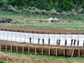 Alemanha está transformando 62 bases militares em santuários para a vida selvagem