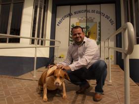 Morador que adotar cães terá até 50% de desconto no IPTU em cidade do Paraná