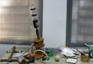 Estudantes da UFPB criam foguete para reflorestamento