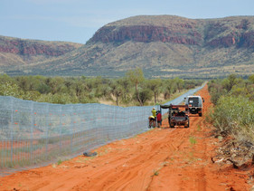 Austrália constrói a maior cerca à prova de felinos selvagens do mundo para proteger marsupiais amea