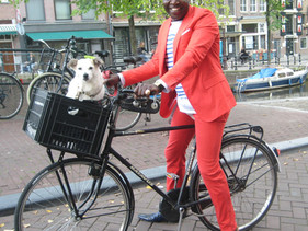 Holanda é o primeiro país do mundo sem nenhum cão de rua abandonado
