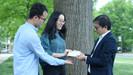 Pesquisadores desenvolvem madeira capaz de resfriar ambientes
